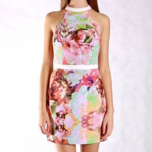 Finders Keepers Winter Song Dress Light Rose